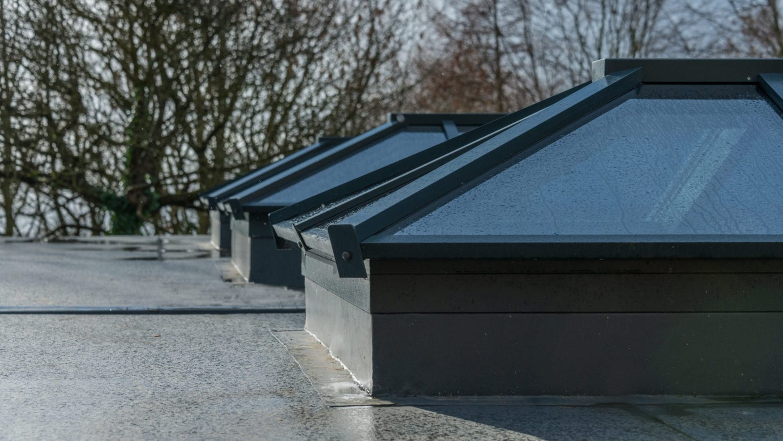Lantern Roofs Falkirk